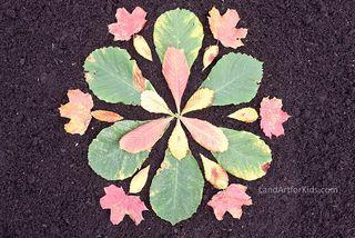 Leaf Star