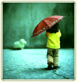 Child,girl,kid,rain,umbrella,children-b387c631c804618df784679207dc396e_h