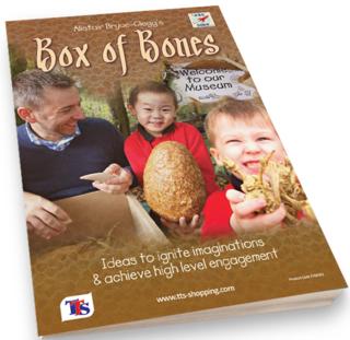Box of Bones cover 3d