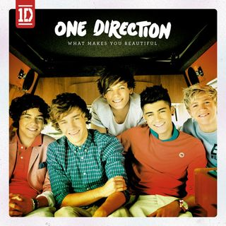550x550_one_direction_what_makes_you_beautiful